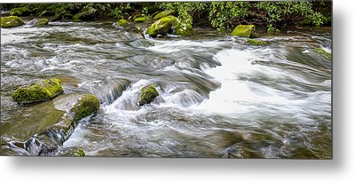 Metal Print featuring the photograph Stream  by Trace Kittrell