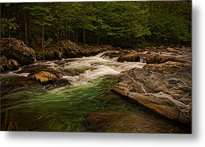 Stream Within The Trees Metal Print
