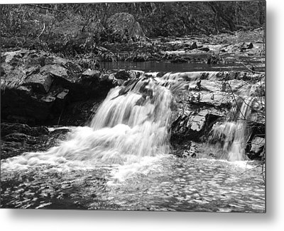 Metal Print featuring the photograph Streambed 2 by David Lester