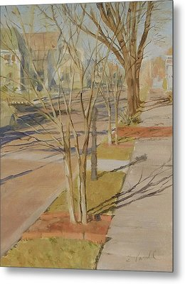 Street Trees With Winter Shadows Metal Print