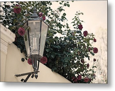 Streetlight Surrounded By Roses Metal Print by Aiolos Greek Collections