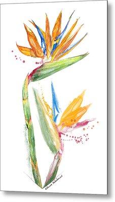 Strelitzia - Bird Of Paradise 13 Elena Yakubovich Metal Print