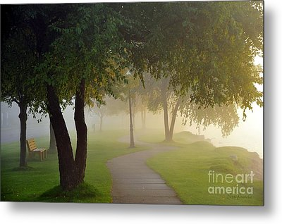 Stroll In The Fog Metal Print by Terri Gostola