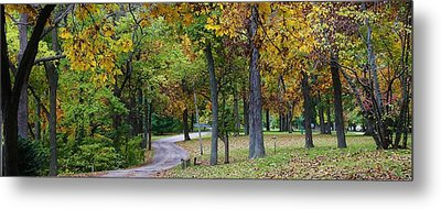 Stroll Through The Park Metal Print by Bruce Bley