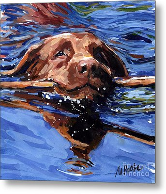 Strong Swimmer Metal Print by Molly Poole