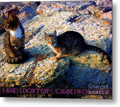 Strong-willed Cat Metal Print by Hanza Turgul