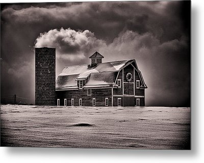 Stuck In The Cold Metal Print by Darren  White