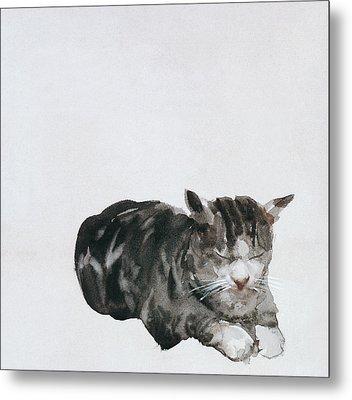 Study Of Cat Metal Print by Giuseppe De Nittis
