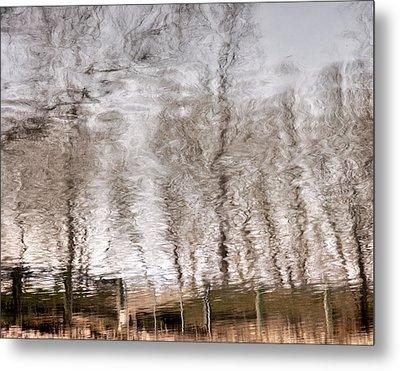 Subdued Reflection Metal Print by Steven Milner