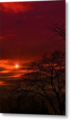 Suburban Skies Metal Print by Tom York Images