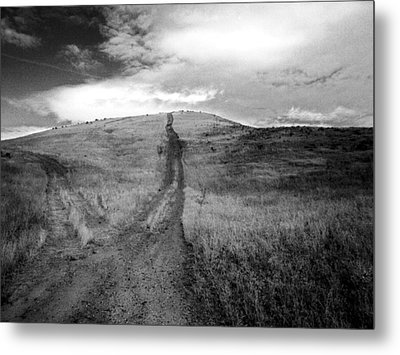 Metal Print featuring the photograph Succer Creek by Tarey Potter