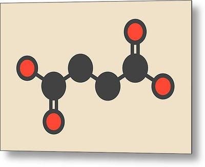 Succinic Acid Molecule Metal Print by Molekuul
