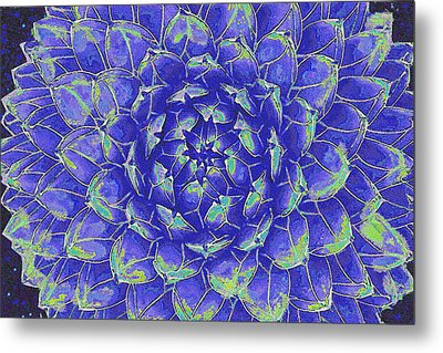 Metal Print featuring the digital art Succulent - Blue by Jane Schnetlage