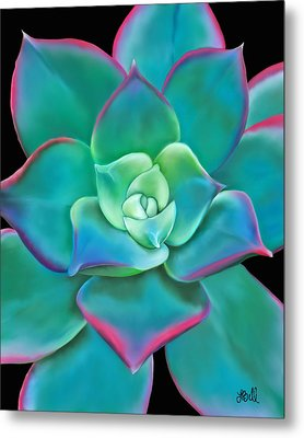 Metal Print featuring the painting Succulent Aeonium Kiwi by Laura Bell