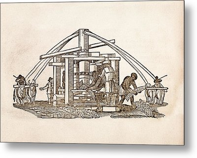 Sugar Cane Mill Metal Print by Middle Temple Library