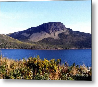 Metal Print featuring the painting Sugarloaf Hill In Summer by Barbara Griffin