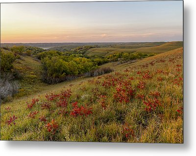 Sumac Metal Print by Scott Bean
