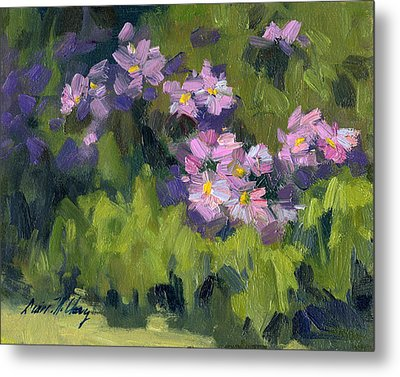 Summer Asters Metal Print by Diane McClary