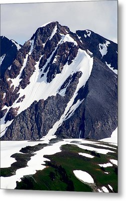 Summer At The Top Of Whistler Metal Print by Christine Burdine
