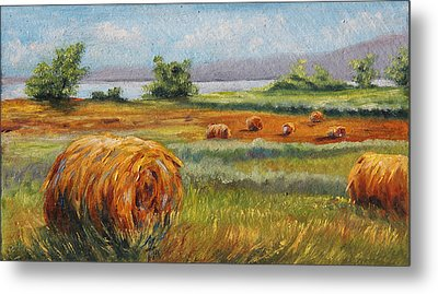 Summer Bales Metal Print by Meaghan Troup