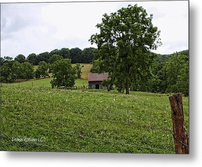 Summer Barn Metal Print by Denise Romano