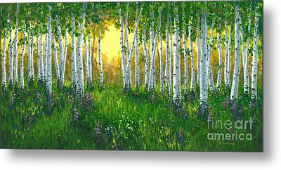 Summer Birch 24 X 48 Metal Print