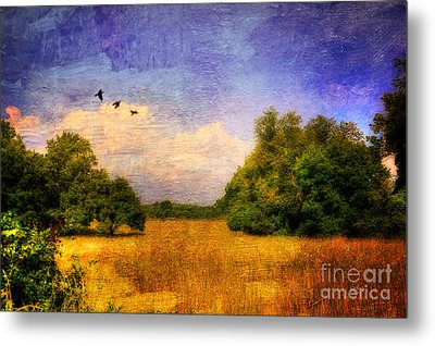 Summer Country Landscape Metal Print by Lois Bryan