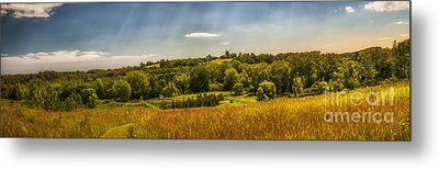 Summer Countryside Metal Print