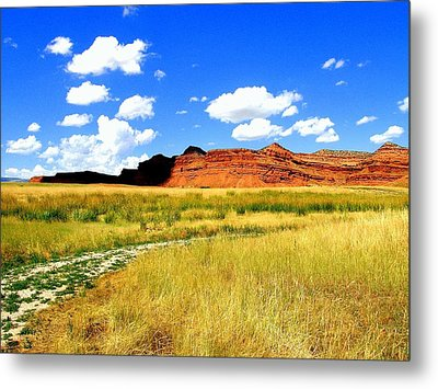 Metal Print featuring the photograph Summer Day On Ranch Land by Antonia Citrino