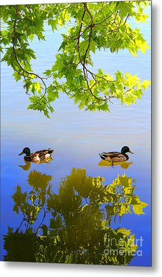 Summer Day On The Lake Metal Print by Mariola Bitner