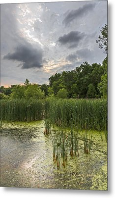 Summer Evening Clouds Metal Print