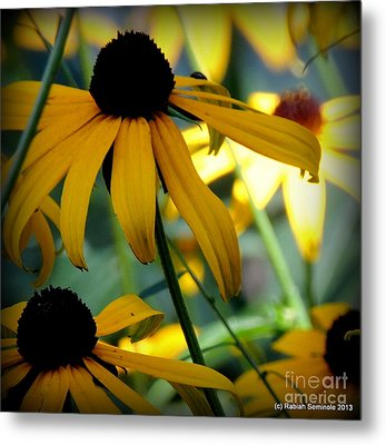 Summer Flowers Metal Print