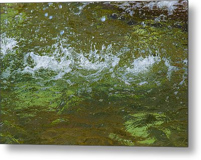 Summer Freshness - Featured 3 Metal Print by Alexander Senin