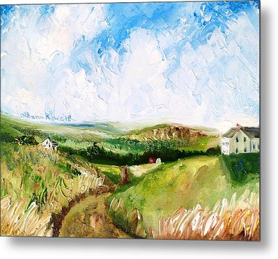 Summer In The Dale  Metal Print by Shana Rowe Jackson