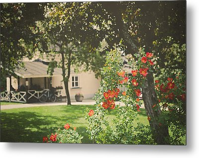 Metal Print featuring the photograph Summer In The Park by Ari Salmela