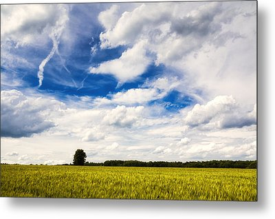 Summer Landscape With Cornfield Blue Sky And Clouds On A Warm Summer Day Metal Print by Matthias Hauser