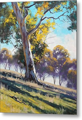 Summer Light Metal Print
