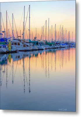 Summer Light Metal Print by Heidi Smith