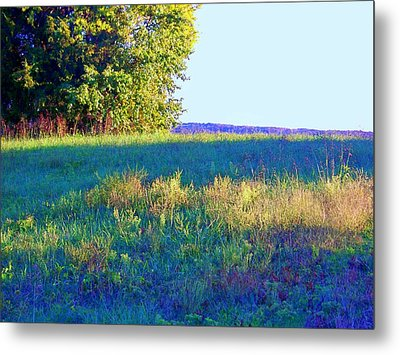 Summer Light Metal Print by Shirley Moravec