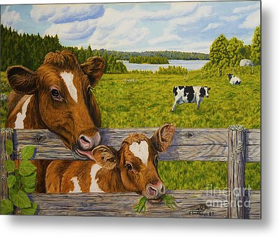 Summer Pasture Metal Print by Veikko Suikkanen