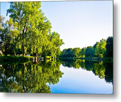 Summer Reflections Metal Print by Sara Frank