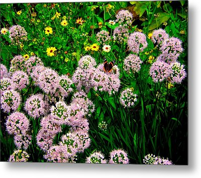 Metal Print featuring the photograph Summer Song by Zafer Gurel