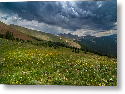 Summer Storm Metal Print by Michael J Bauer
