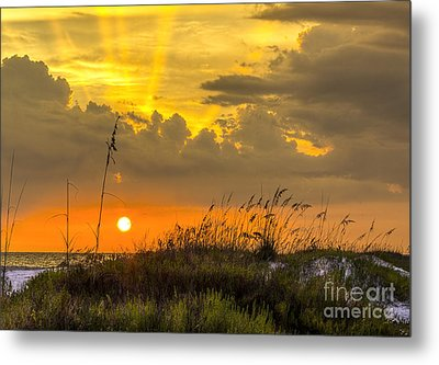 Summer Sun Metal Print by Marvin Spates