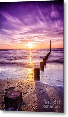 Summer Sunset Metal Print by Darren Wilkes