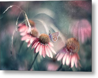 Summer Wonderland Metal Print by Magda  Bognar