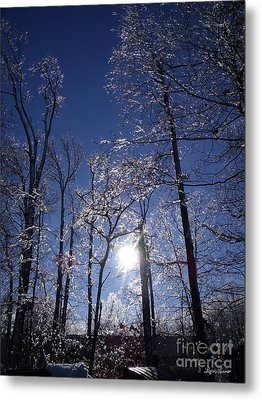 Metal Print featuring the photograph Sun And Ice by Lyric Lucas