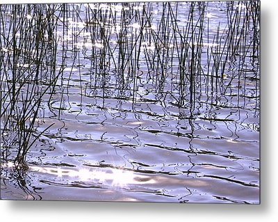 Sun And Water Metal Print by Susan Crossman Buscho