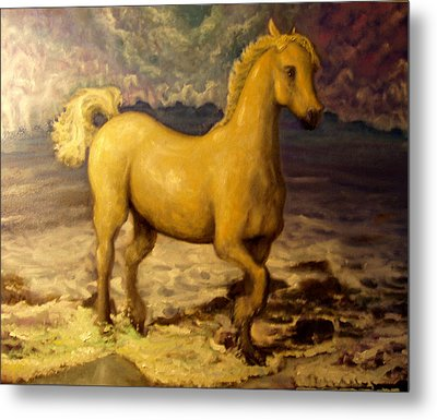 Sun Blessed Horse Metal Print by Graham Keith