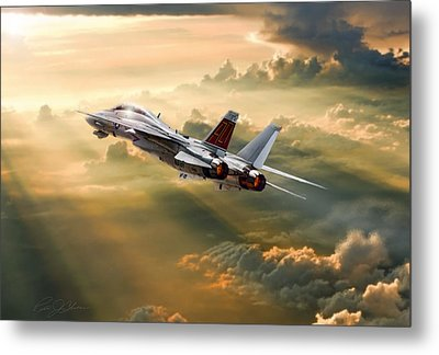 Sun Catcher Tomcat Metal Print by Peter Chilelli